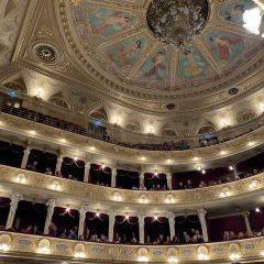 Opera and Ballet Theatre of Solomiya Krushelnytska User Photo