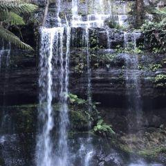 菲德爾山國家公園用戶圖片