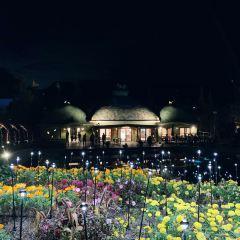 拉格娜登堡遊樂園用戶圖片