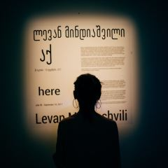 Museum of History and Ethnography User Photo