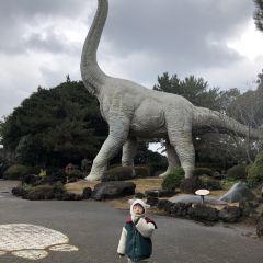 제주 공룡 랜드 여행 사진