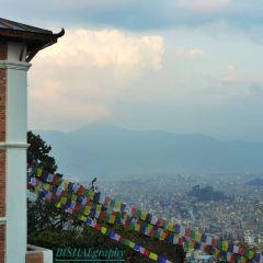 Swayambhunath Stupa User Photo