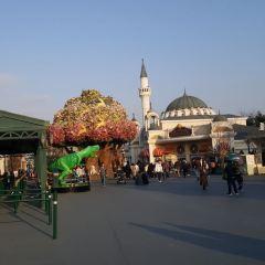 愛寶樂園用戶圖片