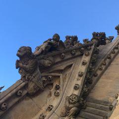 옥스포드 대학 여행 사진
