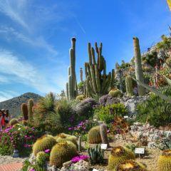 Jardin Exotique d'Eze User Photo
