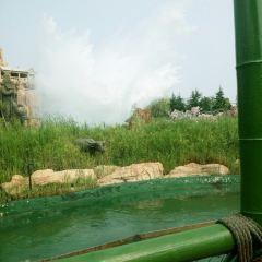 칭다오 판타와일드 드림랜드 여행 사진
