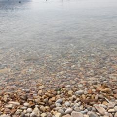 Nanhuangcheng Island User Photo