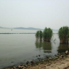 宜興丁蜀太湖綠道騎行用戶圖片