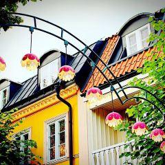 Grona Lund遊樂場用戶圖片