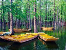 渌洋湖湿地公园-江都区-rodame