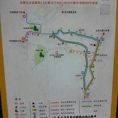Xiangshan (Elephant Mountain) Nature Trail User Photo
