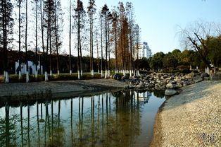 City Park1