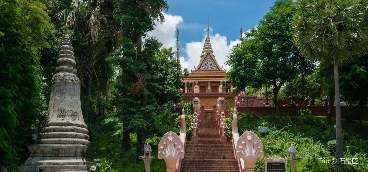 Wat Phnom2