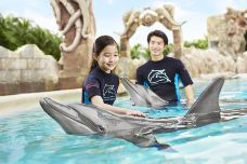 海豚园-圣淘沙岛-傻桃子呦西
