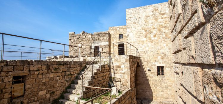 The Crusader Castle2