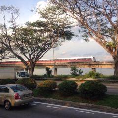 Lower Seletar Reservoir Park User Photo