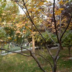 Shike Garden User Photo