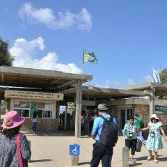 Caesarea National Park User Photo