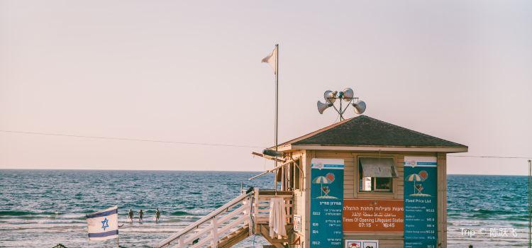Tel Aviv Port1