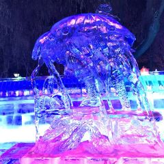 Central Street Colorful Ice Sculpture World User Photo