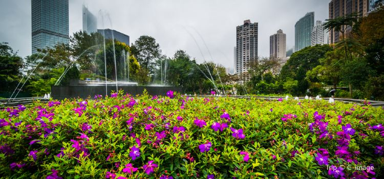 Hong Kong Zoological And Botanical Gardens3