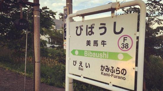 Bibaushi