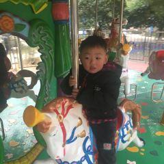虎岩公園用戶圖片