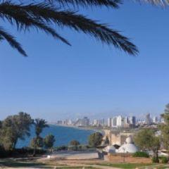Netanya User Photo