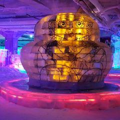 中俄蒙國際冰雪樂園用戶圖片