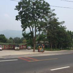Shunxing Farm House User Photo