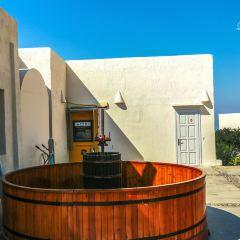 聖島酒廠用戶圖片