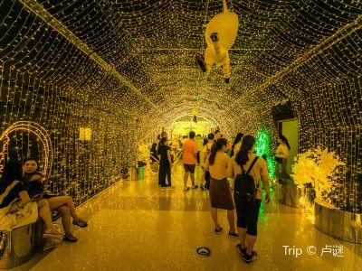 상하이 와이탄 싱쿵춰줴 예술관(상해 외탄 성공착각 예술관)