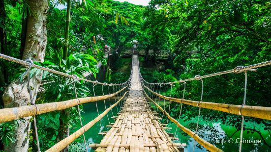 Bamboo Hanging Bridge