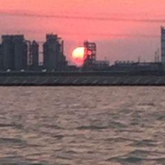 黃驊港出海遊用戶圖片