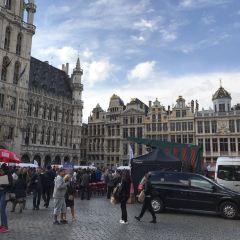 布魯塞爾市政廳用戶圖片