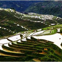 Jiabang Terrace User Photo