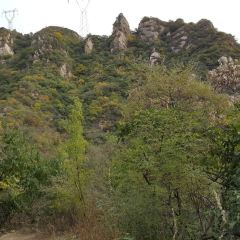 Changping Shuanglong Mountain Park Forest User Photo