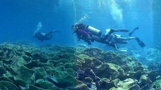 Nanning Manlan Diving Club