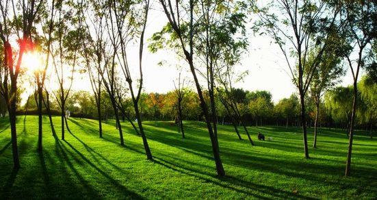 Xiang Xiuli Park