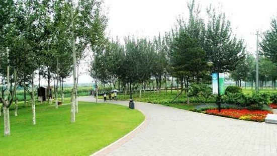 Liangxiang Park
