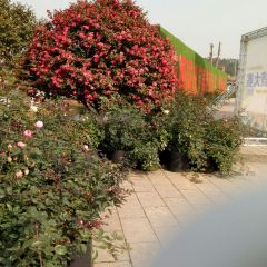 宜春花博園用戶圖片
