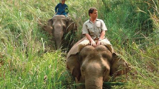 Elephant Riding in Camp Chang Kalim