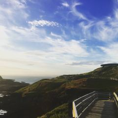 Churchill Island用戶圖片