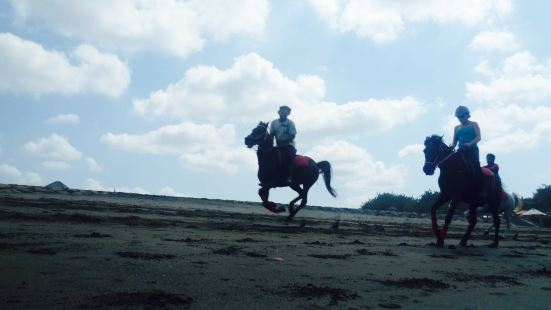 Kuda P Stables, Bali Horse Riding Experience