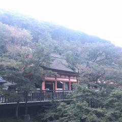 Kiyomizu-dera Temple User Photo
