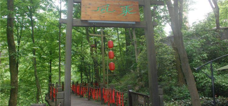 南華山神鳳文化景區2