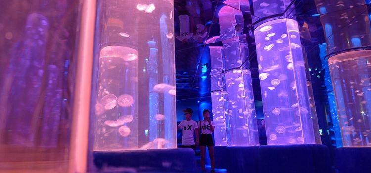 Dream Aquarium1