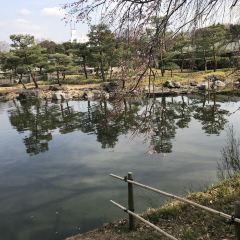 白鳥花園用戶圖片
