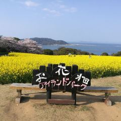 Nokonoshima User Photo