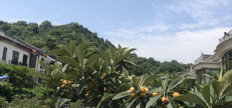 杭州生態園